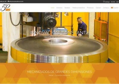 www.mecanizadoscas.com