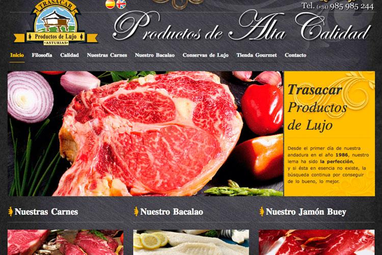 <span>www.trasacar.es</span> Web Corporativa · Dos idiomas
